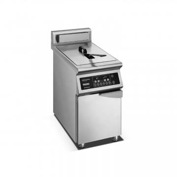 High Capacity Electric Deep Fat Fryer with Temperature Controller