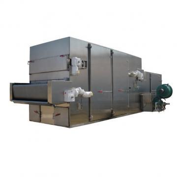 Dw Series Conveyor Mesh Belt Dryer for Ginger /Flower /Leaf