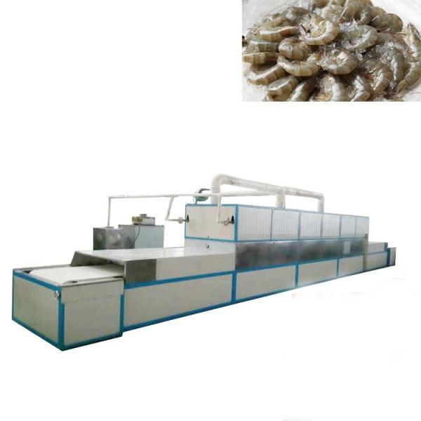 Meat Smoking Machine/Fish Smoking and Drying Equipment
