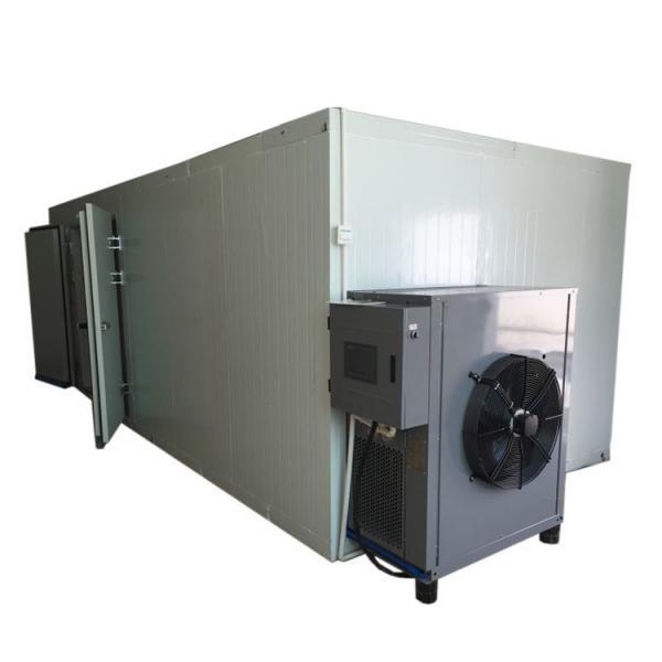 fruit/nut/food processing drying machine