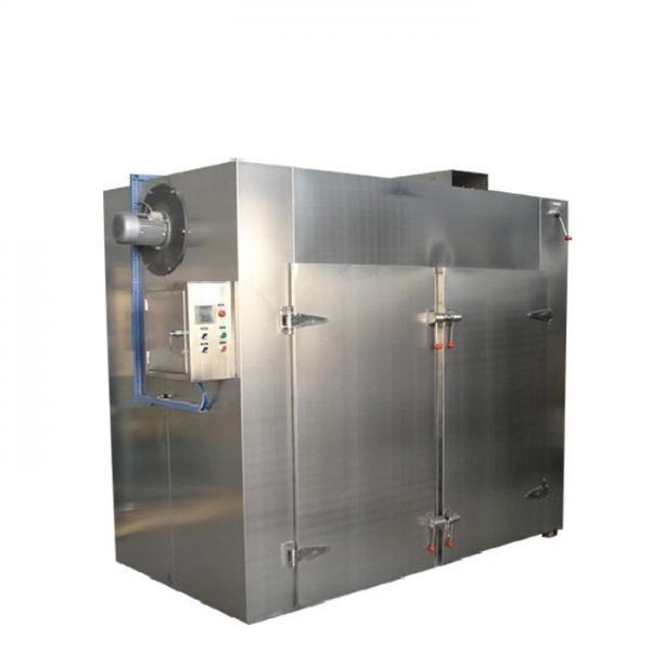 10meters 5layers Automati Cbd Hemp Dryer Mesh Belt Continuous Dryer