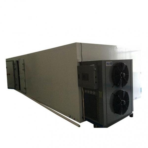 Large Capacity Hemp Gas Burner Dryer Mesh Belt Dryer