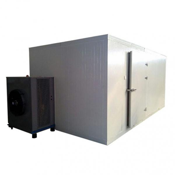 Cbd Flower Hemp Continuous Drying Machine Dryer for Cbd Oil Extraction