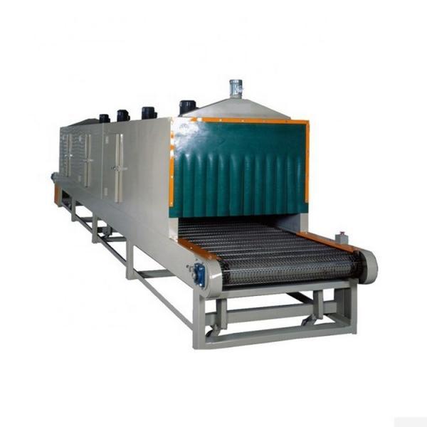 Sterilizing Powder Mesh Belt Dryer for Foodstuff Industry